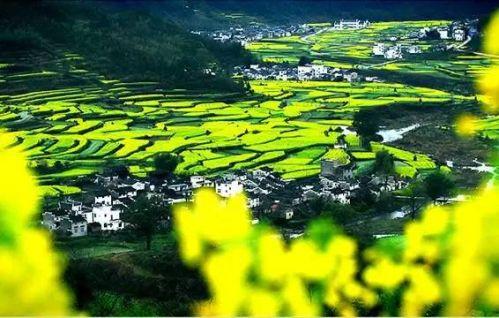 """与皖南,浙西毗邻,已被国内外誉为""""中国最美丽的农村""""."""